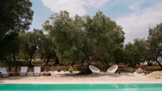 FIKUS THE APULIAN B&B